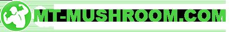 logo (1) копия